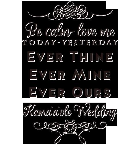 Wedding slide 6